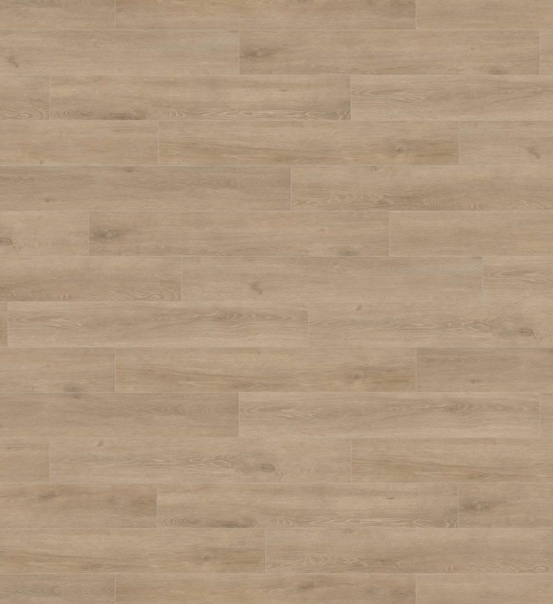 Ламинат Haro Tritty 100  Oak Veneto Crema арт. 535261<br/>(Арт.: 535261)