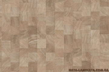 Ламинат Parador Дуб поперечный срез бел. 1475582