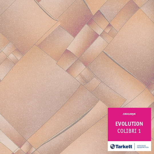 Линолеум Tarkett Evolution COLIBRI 1